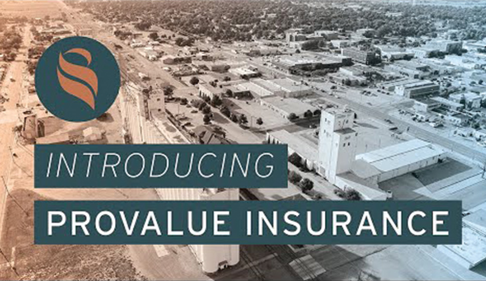 Welcome to ProValue!